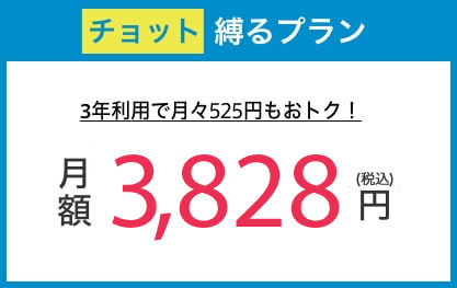 チョット縛るプラン月額3,480円